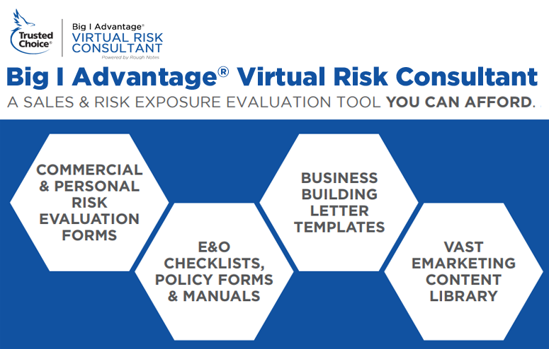 how to become a risk consultant